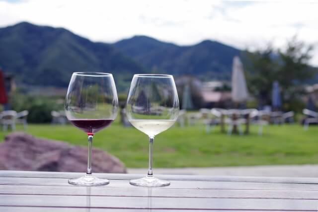 ブルワリーとワイン