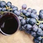 オーガニックワインって何?一般的なワインとの違いや特徴を徹底解説