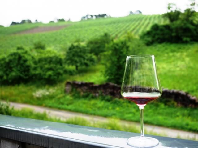 ワイナリーと赤ワイン